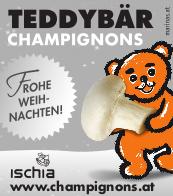 Frohe Weihnachten wünscht Teddybär Champignons